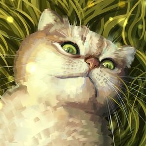Square chat couper