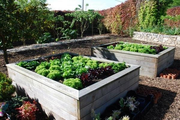 recherche bonne terrain pour jardin annonce sur sideplace. Black Bedroom Furniture Sets. Home Design Ideas
